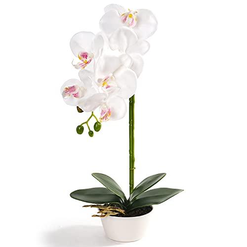 rue semester konstgjord orkidé blomsterarrangemang med porslinsvas, bonsai dekoration White With White Bowl Pot