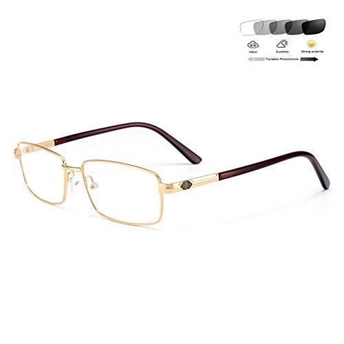 XYSQWZ Gafas De Lectura Multifocales Progresivas Gafas De Sol Fotocromáticas Multifuncionales para Exteriores / Uv400 Adecuadas para Conducción/Dioptría De Pesca +1.0 A + 3.0 Gris + 2.5