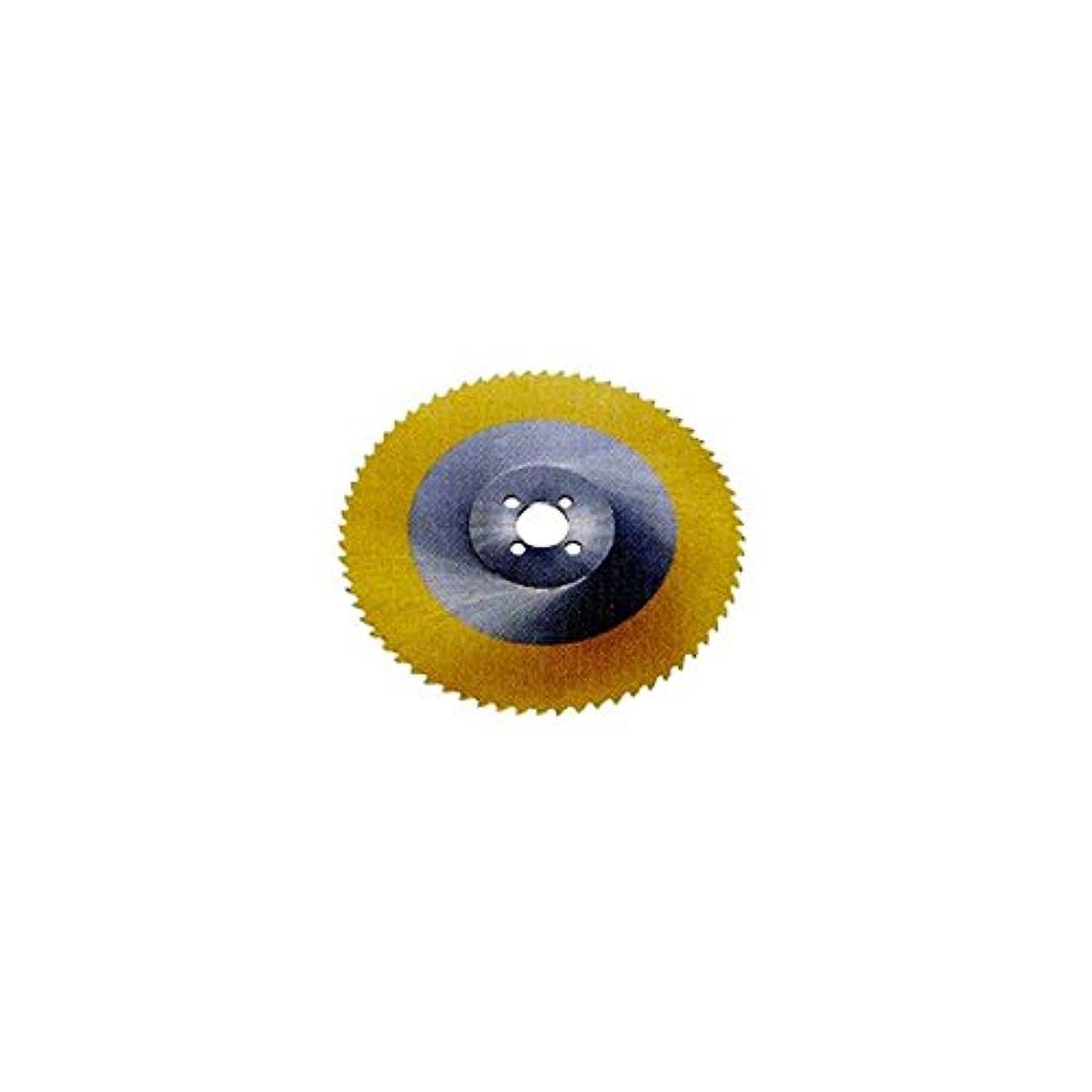 ツールにぎやかシロクマ岡崎精工:TINコバルトソ(65×11×3)385×2.5×40-P TCMS48-P03