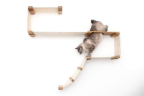 CatastrophiCreations Play - Cat Hammock & Climbing Activity Center - Wall-Mounted cat Tree
