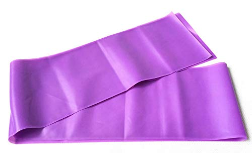 V-Shine Resistance Loop Bands for Legs and Butt | Elastic Exercise Band Set for Women | Best Resistant Workout Loops for Booty, Glute, Leg & Thigh Exercising with Free Carrying Bag, Purple