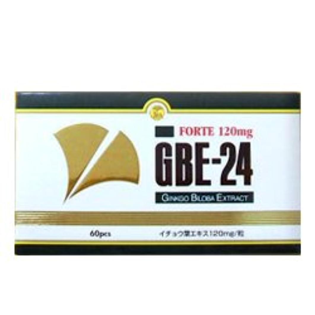 申し立てられたエキスパート解説GBE-24 フォルテ イチョウ葉エキス食品 335mg×60粒