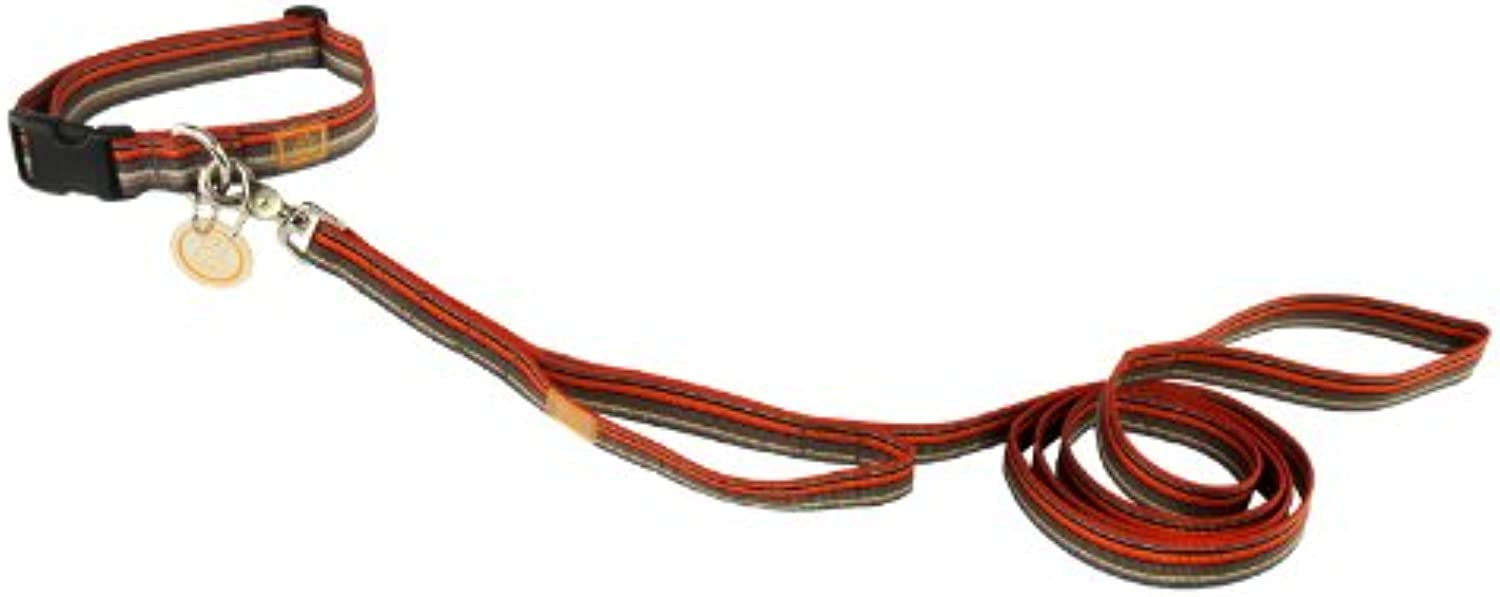 OllyDog 72Inch Downtown Leash with Extra Handle, orange