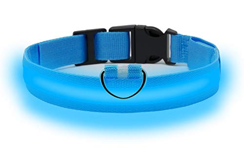 Clio Illuminated LED Rechargeable Dog Collar (Medium,...