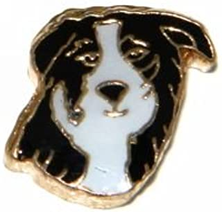 Border Collie Dog Floating Charm for Heart Lockets
