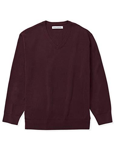 Amazon Essentials Men's Big & Tall V-Neck Sweater, Burgundy, 4X Tall