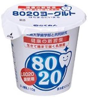 四国乳業 8020ヨーグルト 110g×24個