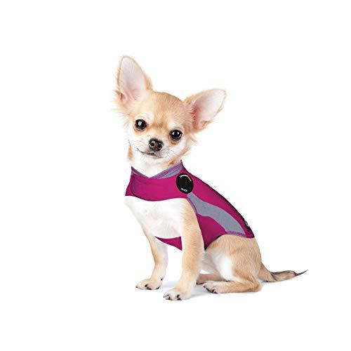 Thundershirt Polo - Beruhigungsweste für Hunde