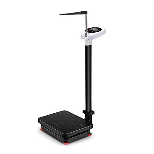 YZJJ Báscula para medir Peso y Altura Balanza Digital, Balanzas elect