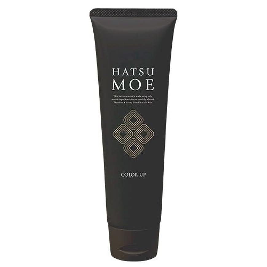 パイほうきコーナー髪萌 カラーアップ ナチュラルブラウン ヘアカラートリートメント 白髪染め 女性 男性 天然植物由来成分使用