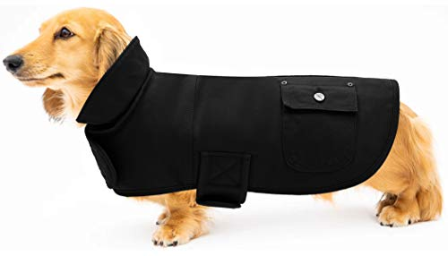 Geyecete Martin - Abrigo térmico para perro salchicha con bandas ajustables, color negro