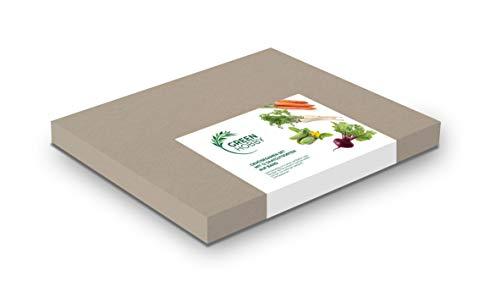 Torseed Gemüsesamen Set mit 6 Saatgutsorten auf Band, Gemüseanbau im Garten auf Balkon oder Terrasse, leichte Anzucht, Gemüse selber züchten, für Anfänger geeignet, Gemüsesamen