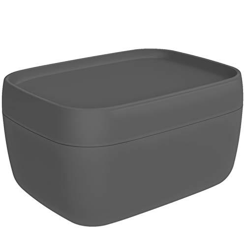 Rotho Sofia Aufbewahrungsbox 19l mit Deckel, Kunststoff (PP) BPA-frei, anthrazit, L/19l (39,3 x 29,7 x 21,1 cm)