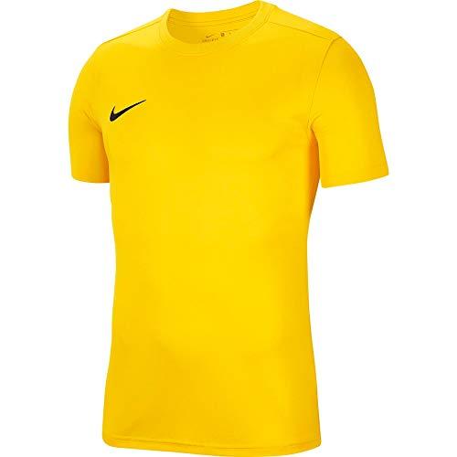 NIKE M Nk Dry Park VII JSY SS Camiseta de Manga Corta, Hombre, Amarillo (Tour Yellow/Black), S