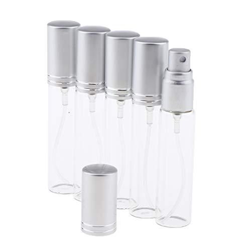 5 x Bouteille de Parfum Rechargeable en Verre Transparent avec Couvercle 10 ml - Argent mat