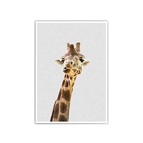 Giraffen Poster: Süßes Tier Poster in a4 oder 30x40 cm - Grauer Hintergrund - ohne Bilderrahmen