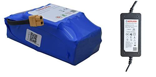 REPLOOD Kit Alimentatore Caricatore Hoverboard + Batteria Per Smart Balance Monopattino