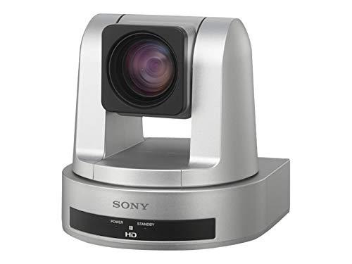Sony SRG-120DS Überwachungskamera Schwarz/Silber