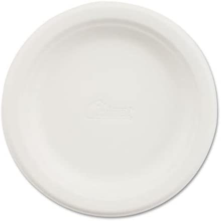 CHINET VACATEPK Paper Dinnerware Plate 6 dia White 125 Pack product image