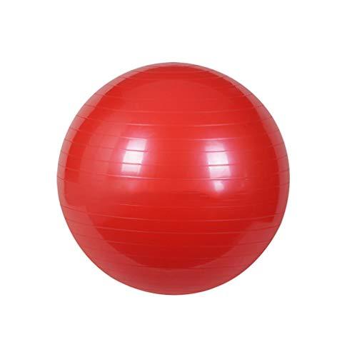 fitball Palla Da Ginnastica Con Pompa 65 Cm Pilates Ginnastica Yoga Gym Ball Unisex Adult Equilibrio Di Stabilità Anti-Scivolo E...