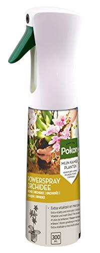 Pokon Orchideen Powerspray, Blattglanz-Spray, 300ml