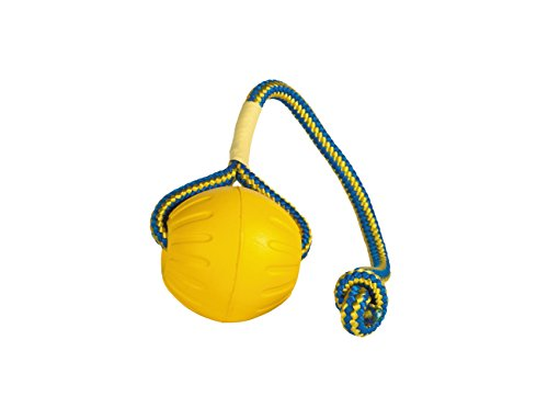 Starmark Swing 'n Fling DuraFoam Ball Dog Toy Large
