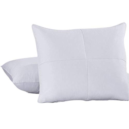 Royal Hotel Soft Goose Feathers and Goose Down Pillow - 240 Thread Count Cotton Shell, King Size, Soft, Set of 2