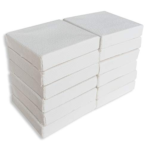 """LWR CRAFTS Mini Stretched Canvas 2"""" X 2"""" Pack of 12"""