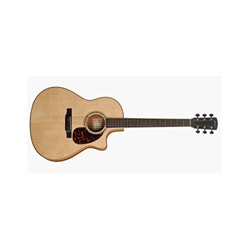 Larrivee LV05E Akustische Gitarre