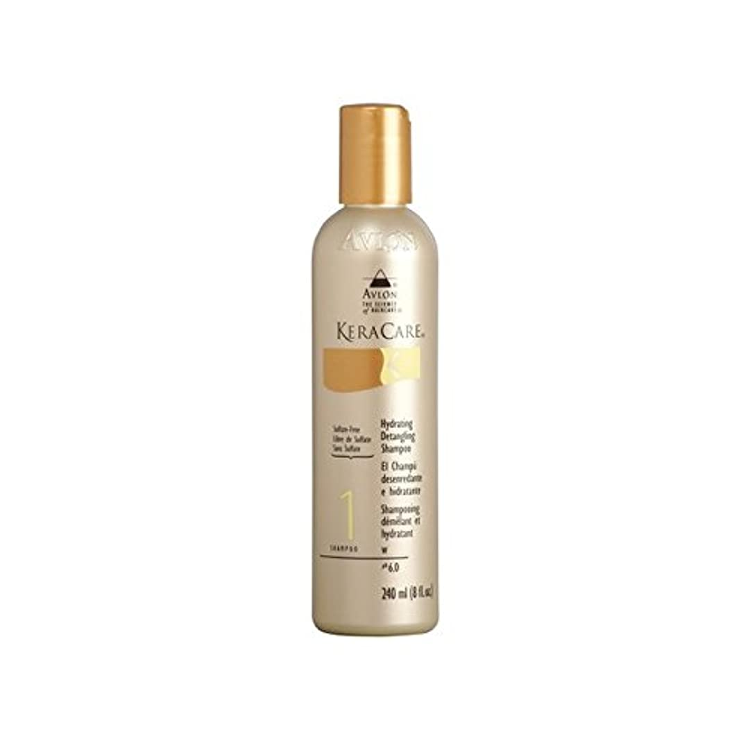 欠席代表Keracare Hydrating Detangling Shampoo (240ml) (Pack of 6) - 水和もつれ解除シャンプー(240ミリリットル) x6 [並行輸入品]
