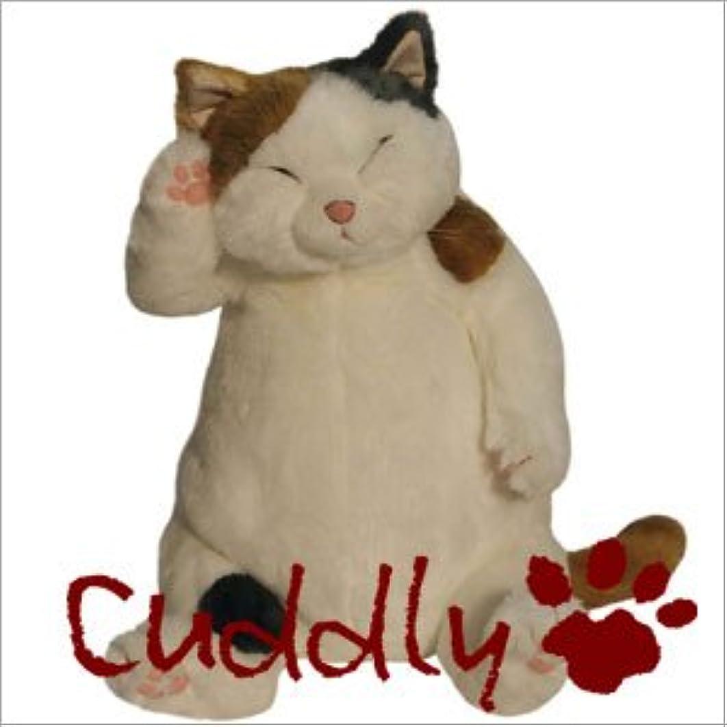 既にオーバーラン箱<Cuddly>カドリー こだわりのぬいぐるみ 猫のヌイグルミ マリア(Maria)