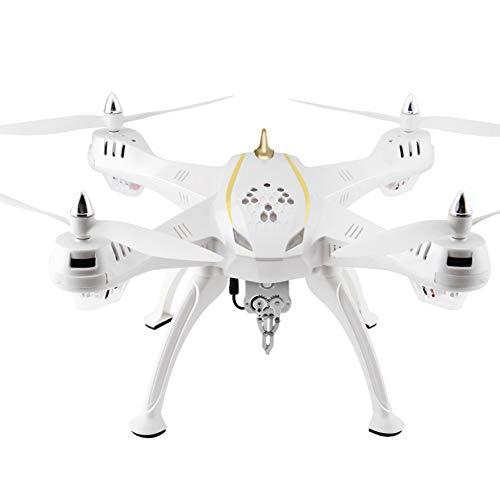 ZFLIN Aviones de Control Remoto a Gran Escala Que pescan cebos Aviones no tripulados fotografía aérea Aviones eléctricos de Cuatro Ejes Modelo de Pesca Profesional RC