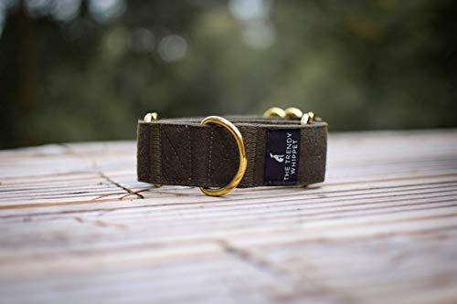 Collar de martingale verde oscuro Whippet Galgo italiano Lurcher Sighthound Collar ancho para perro (mediano)