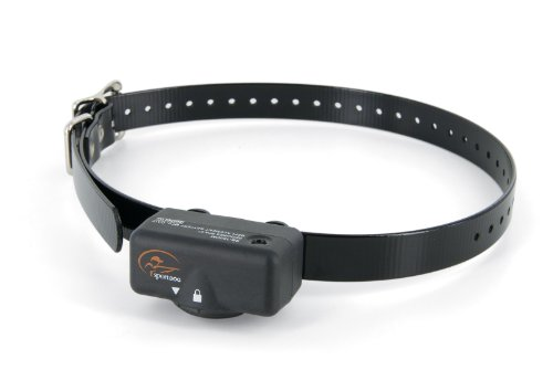 SportDOG Brand NoBark 6 - Waterproof Bark Control Collar with 6 Levels of Static - No Programming Required