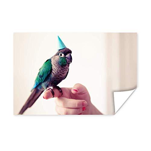 Poster Parkieten - Turquoise parkiet met een feesthoedje op zit op een vinger 120x80 cm