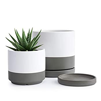Small Plant Pots Set 4.3 Inch & 6 Inch Ceramic Planter Pot for Plants with Drainage Hole and Saucer White/Speckled Grey 94-G-S-6