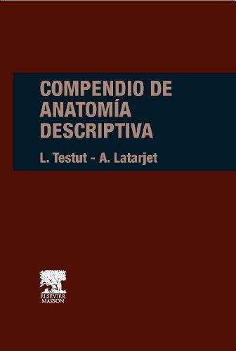 Compendio de anatomia descriptiva (Spanish Edition)