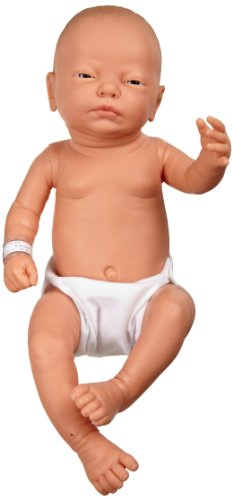 3B Scientific W17001 Female Baby Care Model, 19.7' Height