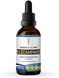 Elecampane Alcohol-Free Liquid Extract, Organic Elecampane (Inula Helenium) Dried Root Tincture Supplement (2 FL OZ)