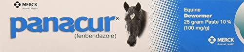 (3 Pack) PANACUR Dewormer Horse Paste 10%, 100mg Each