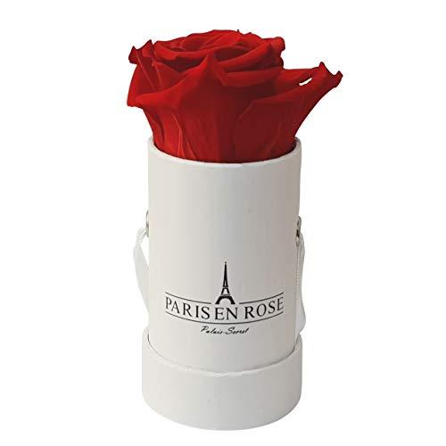 PARIS EN ROSE Mini Rosenbox Palais-Secret | 3 Jahre haltbar | weiße Flowerbox mit roter Infinity Rose | 1 konservierte Blume