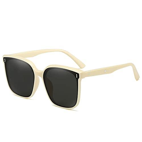 ErLaLa Nuevas Gafas de Sol,Gafas de Sol de Nailon,Gafas de Sol de Moda,diseño Simple/Materiales Ligeros,diseño ergonómico Curvo,protección UV/Bloqueo de Reflejos/Lentes Transparentes