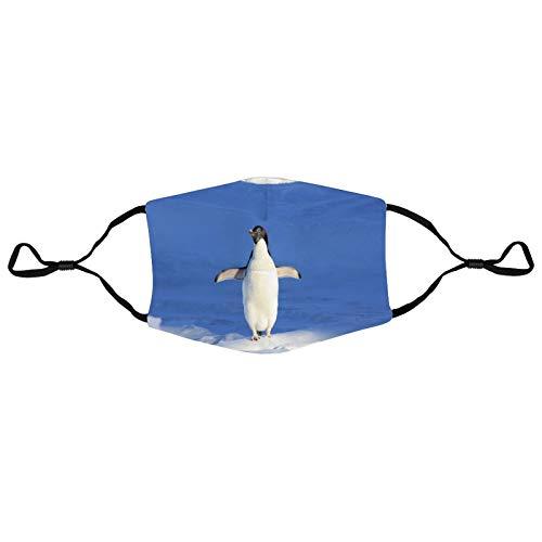 Not Branded Pingino en la nieve de moda linda cara Bandana lavable reutilizable a prueba de polvo para hombres y mujeres