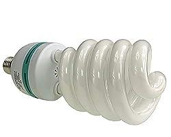professional Full spectrum hydroponic lamp CFL glow bulb 60 watt bulb 5500KH60