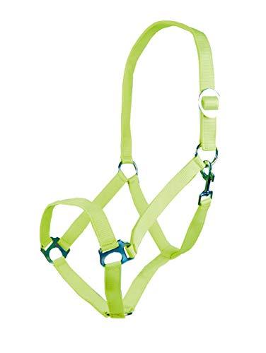HKM Halfter -Stars Economy Softice-, Neon grün, Pony