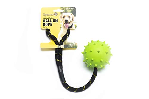 Roscoe#039s Pet Products Natural Rubber Ball on Rope Tug Toy for Dogs Safe and NonToxic