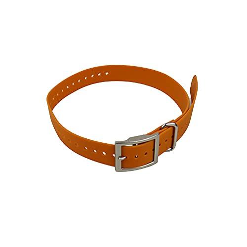 MARMODAY Collars - Collar para perros pequeños, diseño de gatos y gatos, fácil de poner y quitar