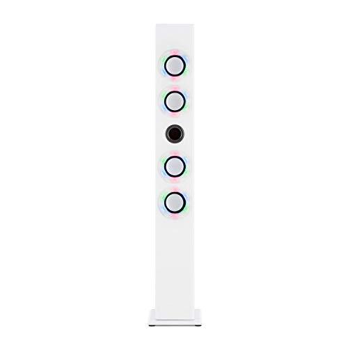 Oneconcept Tallboy - Impianto Karaoke, Lettore, Altoparlante a Torre, Quattro Casse a Banda Larga, Bluetooth, 2 Microfoni con Cavo, Batteria da 1000 mAh, Sintonizzatore Radio, Porta USB, Bianco Zinco