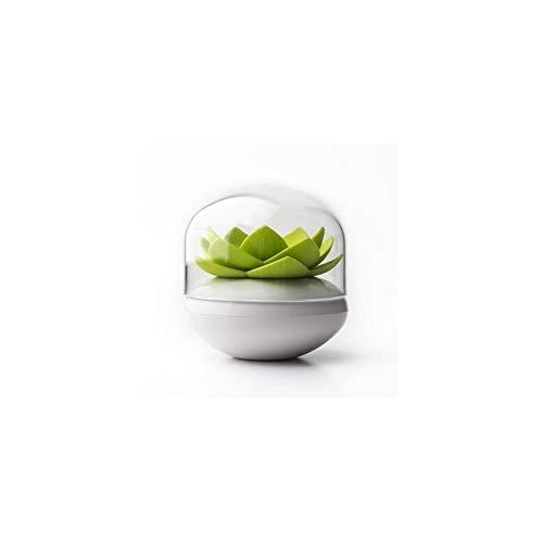 Cadeau Maestro Distributeur de Coton-Tiges Lotus - Qualy
