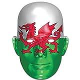 Fancy Me Déguisement pour Homme et Femme Drapeau Gallois Rugby Six Nations Coupe du Monde St Davids Déguisement Masque